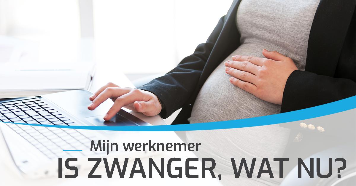 Mijn Werknemer Is Zwanger, Wat Nu?